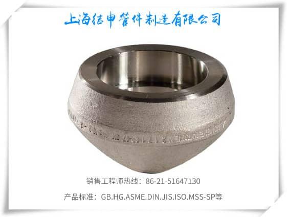 承插焊管座(不锈钢)